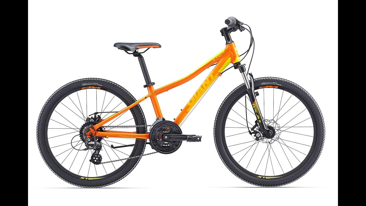And they also have a 2017 giant xtc advanced 2 29er carbon frame. If i were to buy a hardtail today, those are the kind i bikes i would be.