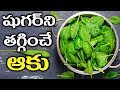 Say Goodbye To Diabetes || Type 2 Diabetes Cure By Spinach Leaves