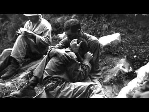 World War I and the Interwar Period