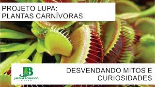 #03 PROJETO LUPA: PLANTAS CARNÍVORAS