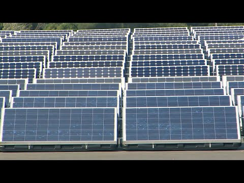 Dan Riskin on the cost of inaction on climate change