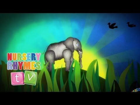 ELEPHANTS HAVE WRINKLES | Nursery Rhymes TV. Toddler Kindergarten Preschool Baby Songs.