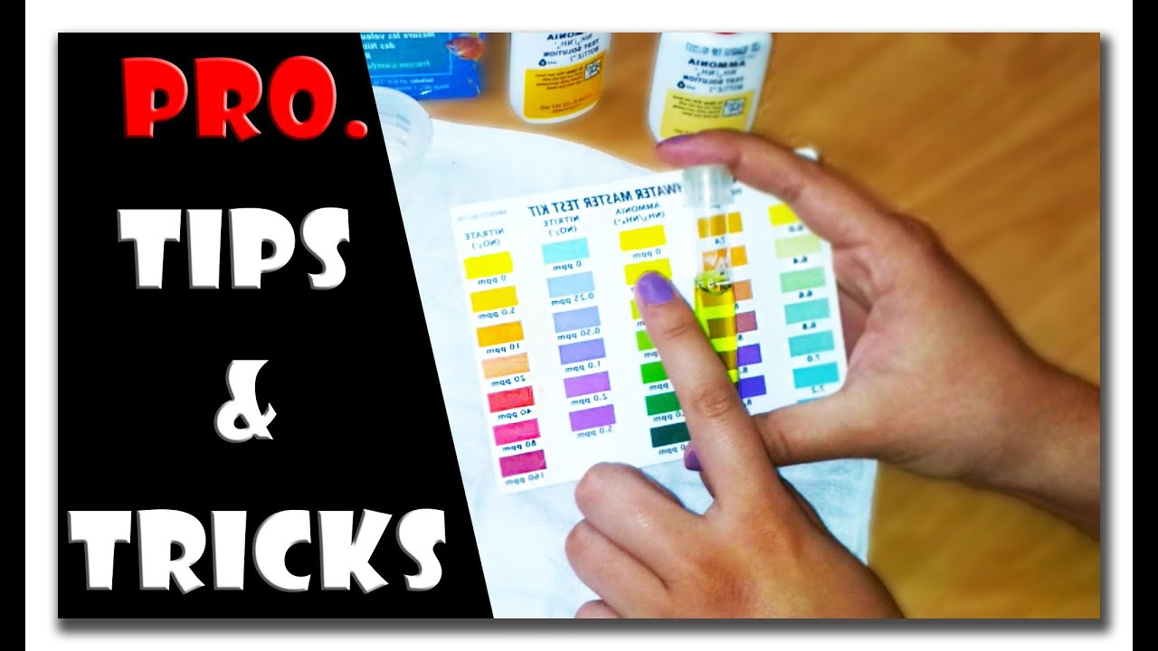 api freshwater master test kit instructions color chart