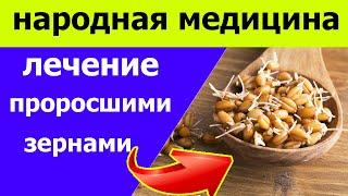 Рецепты для лечения проросшими зернами пшеницы. [НАРОДНАЯ МЕДИЦИНА]