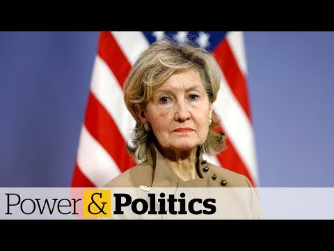 U.S. NATO rep veers off Trump's script | Power & Politics