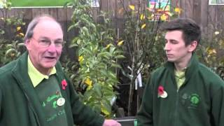 November Gardening Tips @ The Old Railway Line - General Advice
