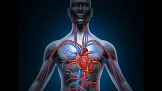 Уникальное упражнение для сосудов всего по 5 минут в день (Улучшаем иммунитет)(Уникальное упражнение для сосудов всего по 5 минут в день Данное упражнение улучшает работу сердечнососуд..., 2016-02-15T13:53:45.000Z)