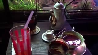 Caffè misterioso a Tokyo! - Vivi Giappone SP