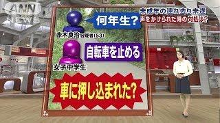 面識ない人から子どもが「声をかけられた時」の対処(14/06/19) 沖野玉枝 検索動画 8