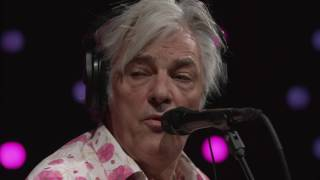 robyn hitchcock   full performance live on kexp