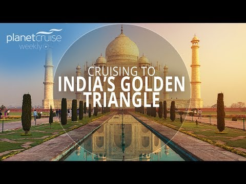 Exploring India's Golden Triangle | Planet Cruise Weekly Ep.93