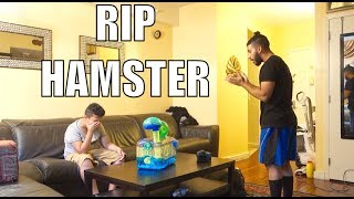 'YOUR HAMSTER DIED' PRANK!! *I bugged out*