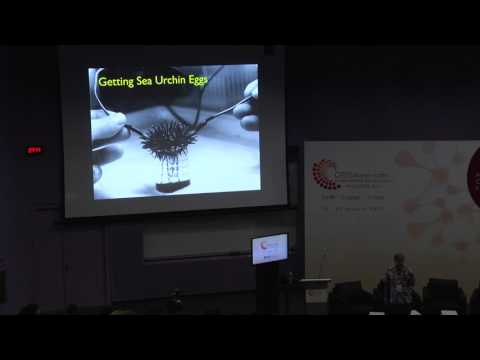 Sir Tim Hunt at GYSS 2017 -  Switches and Latches: The Control of Cell Division