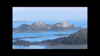 Seal Rock State Park, Alsea Bay and Waldport, Oregon