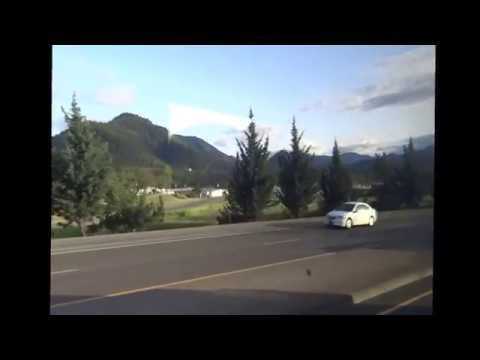 Pacific Coast Specialties: Wrentits to Western Gulls from YouTube · Duration:  9 minutes 20 seconds