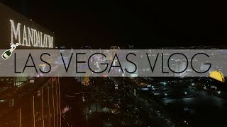 Travel Vlog: LAS VEGAS | It's lit fam