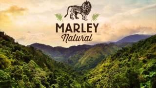 Bob Marley - Natural Mystic at 1.25 speed