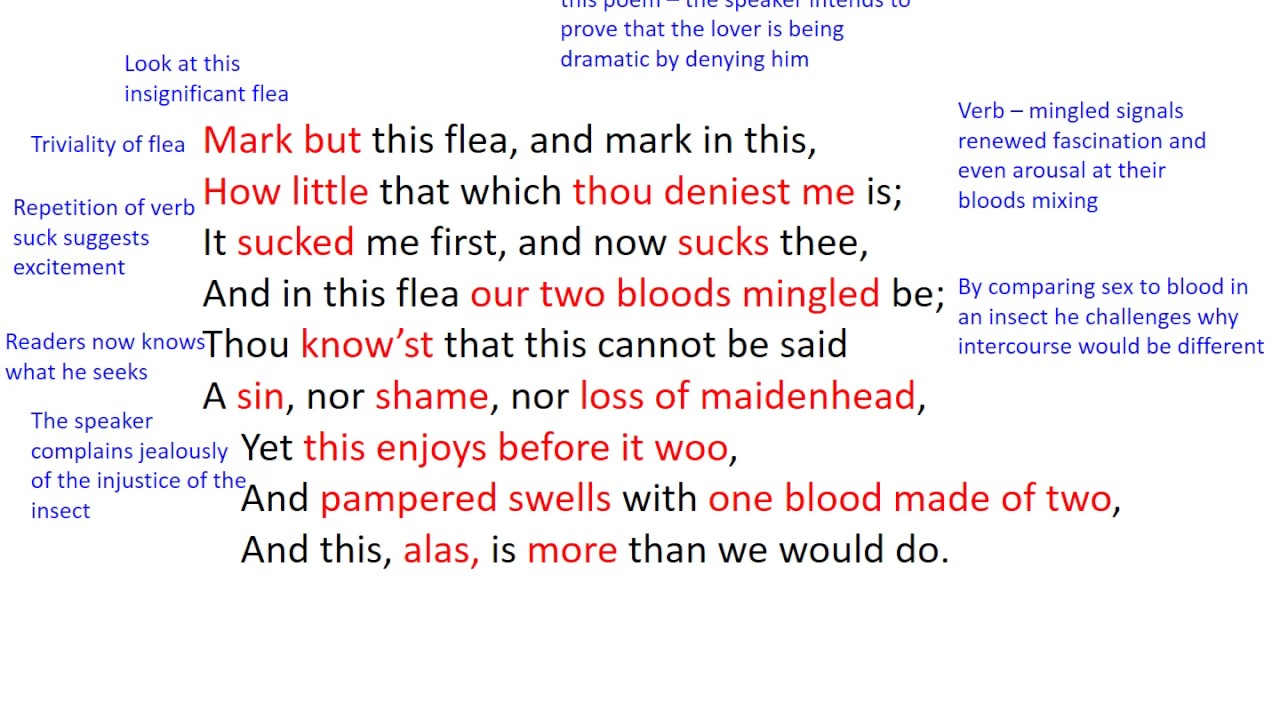 the flea by john donne analysis  the flea by john donne analysis