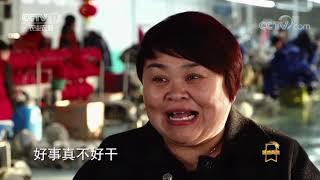 《遍地英雄》 20191223 贾茹:给残疾人一个健全人生|CCTV农业