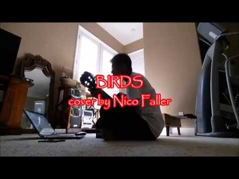 Neil Young - BIRDS (with Lyrics) cover by Nico Faller