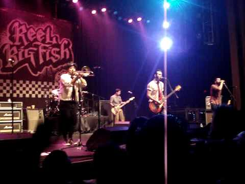 Reel Big Fish - Skatanic