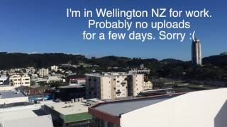 How to Draw in Wellington NZ