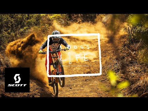 """Warp Speed In South Africa - """"A Dog's Life"""" Ep. 3 W/ Brendan Fairclough And Amaury Pierron"""