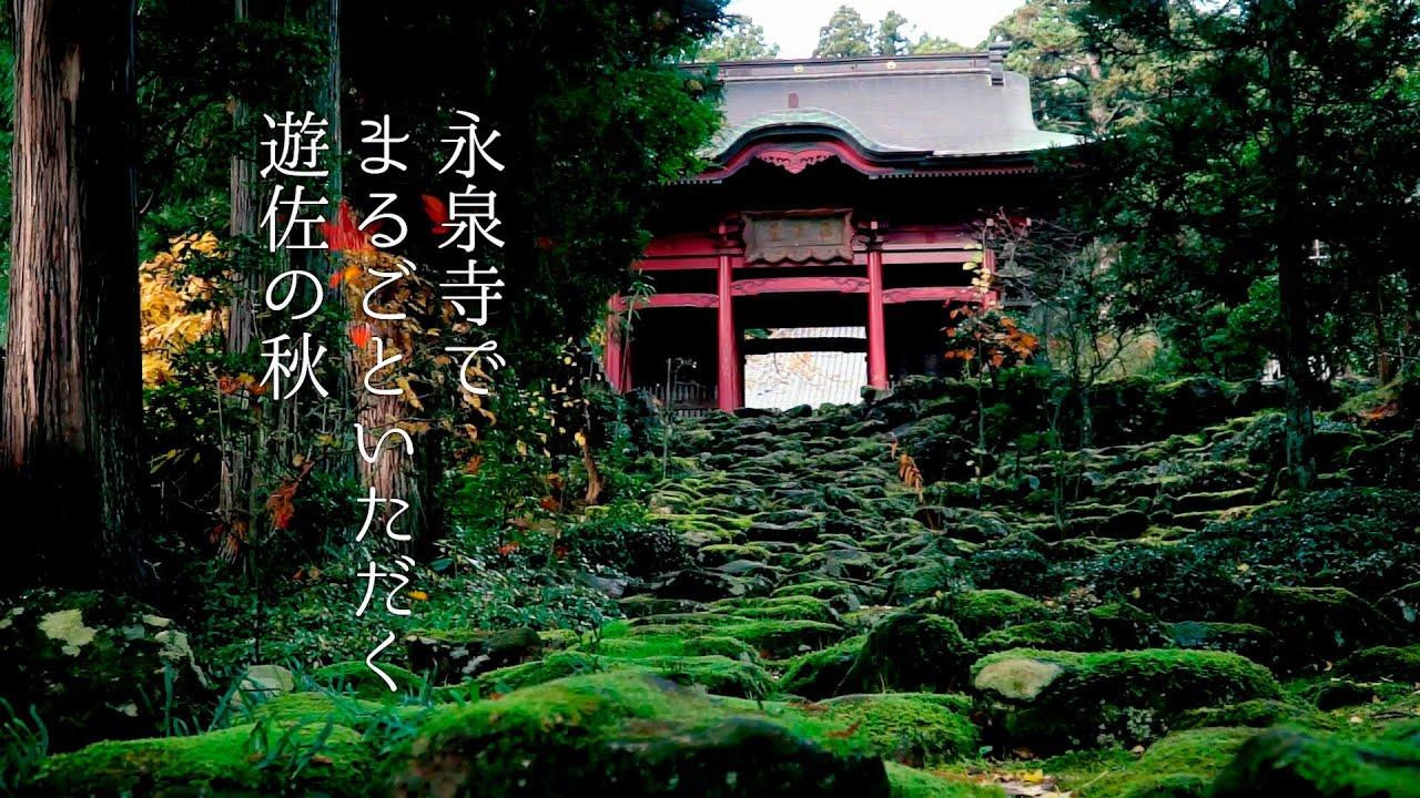 永泉寺でまるごといただく遊佐の秋