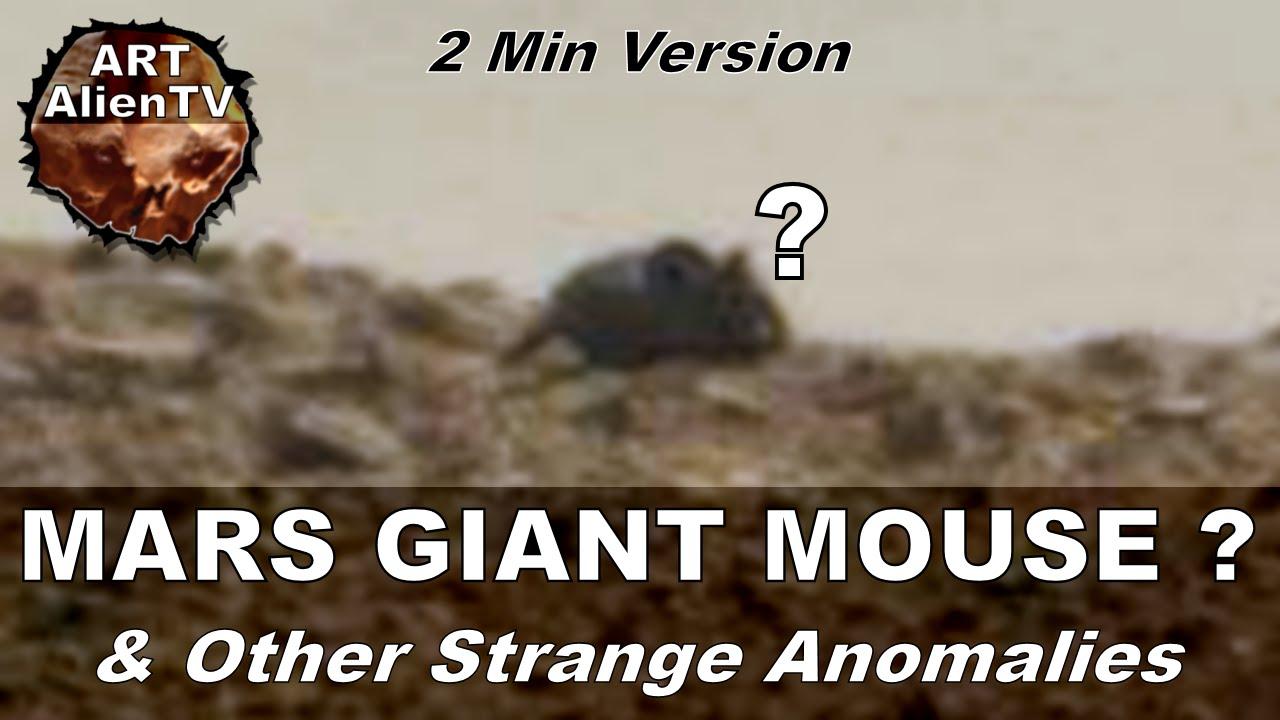 火星の生体専門チャンネルが発表した「火星には巨大なねずみがいる」と明言
