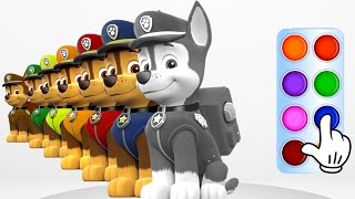 Learn Colors with Paw Patrol Chase - Learning Flashy Color Animation for Baby Toddlers, Kids Part 3