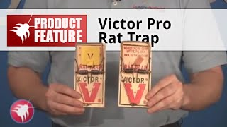 Victor Rat Trap M326 Review