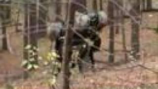 Boston Dynamics Big Dog (March 2008 Nightmare Remix)