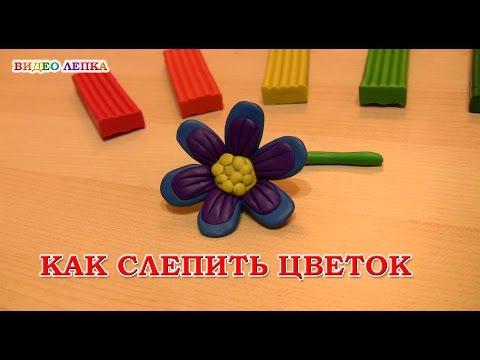 Цветок из пластилина   Видео Лепка
