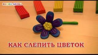 Цветок из пластилина | Видео Лепка
