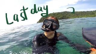Video Tinasjourneyyy: my first time free diving in Thailand! download MP3, 3GP, MP4, WEBM, AVI, FLV Mei 2018
