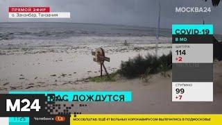 Пляжи мира опустели из-за коронавируса - Москва 24