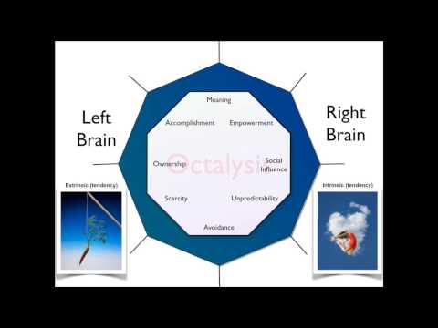 Yu-Kai Chou Octalysis Framework