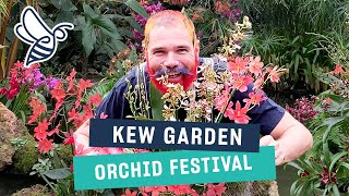 Kew Orchid Festival: Henck Röling Creates Beautiful Orchid Installations