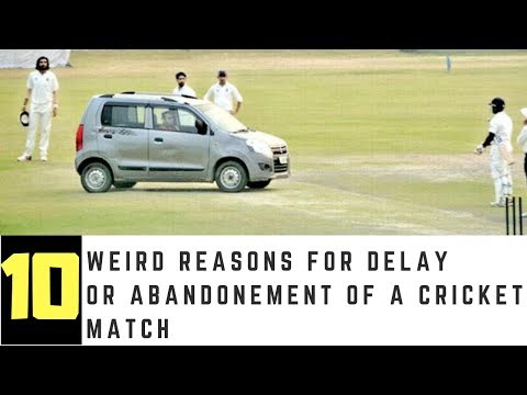 10 weird reasons for delay or abandonment of a cricket match ever