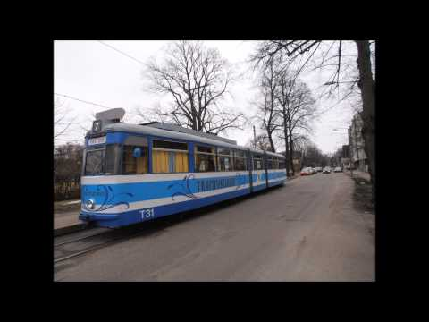 Viimane tramm - Remix - Blue Parrot - Cover