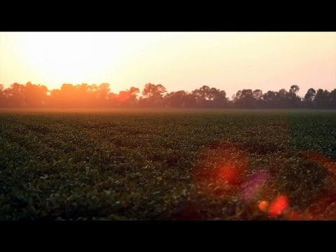 Agri Arkansas September 2015