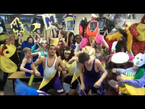 Swan Valley Middle School Student Council Harlem Shake