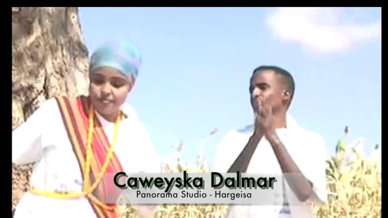 Dhaanto | Shabcaan Adan & Maxamed Axmed Hargeele | FunnyCat TV