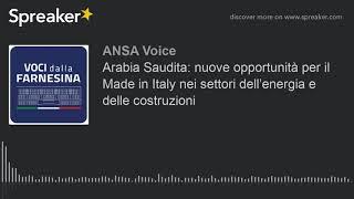 Arabia Saudita: nuove opportunità per il Made in Italy nei settori dell'energia e delle costruzioni