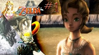 Wii | The Legend of Zelda: Twilight Princess #1 / Link, Un Campesino de Gran Fortaleza