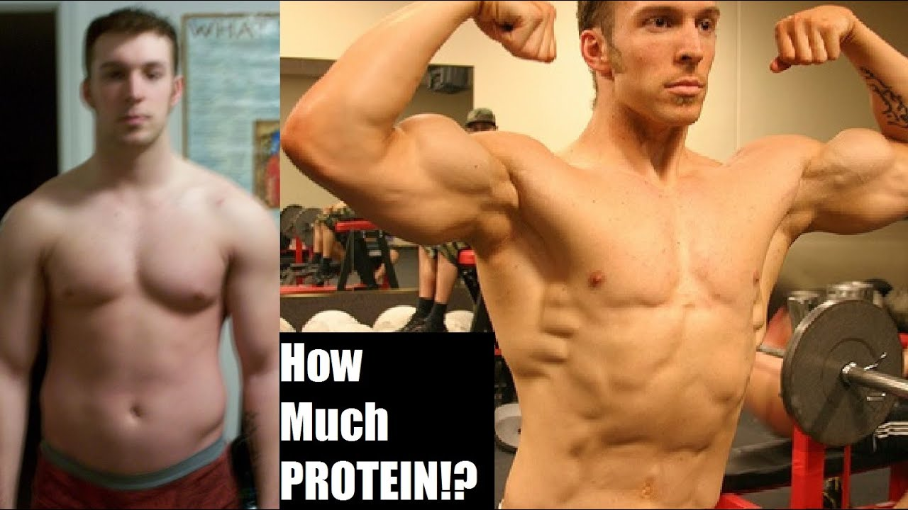 How much protein do you really need to build muscle the for What do u need to build a house