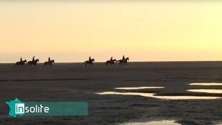 Vidéo de promotion de la picardie maritime - Hauts de France