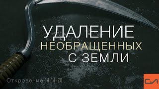 Фото Откровение 14:14-20. Удаление необращенных с земли   Андрей Вовк   Слово Истины