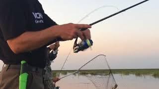 Рыбалка в дельте Волги на базе ''7-ая Жилка''