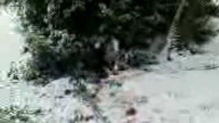 hannah sledging into trees Thumbnail